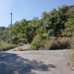 鷲巣岳中腹の林道の分岐地点の画像