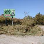 鷲巣岳の登山道入口手前の道標が立っている地点の画像