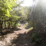 鷲巣岳登山道の入口(国東市)の画像