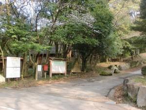 金立教育キャンプ場の画像