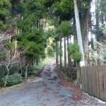渓流の里入口にある井原山登山道への分岐の画像