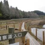 樫原湿原(亀岳・笛岳登山口)の画像