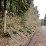 笛岳登山口(樫原湿原近く)の画像