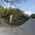 山田水辺公園の先の分岐地点の画像