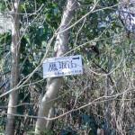 鷹取山取りつき地点の分岐に設置してある山頂を示す標識の画像