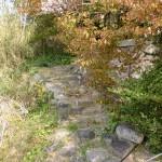 姫島神社本殿左側にある鎮山の登山道入口の画像