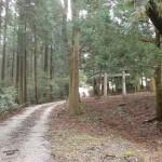馬見山キャンプ村から馬見山登山口に続く林道の画像