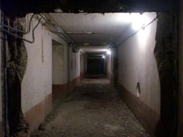 豊砲台内部通路(鰐浦地区・上対馬)の画像