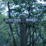 豊砲台からヒトツバタゴ自生地・韓国展望所へのトレッキングコースの道標の画像