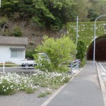 鰐浦バス停(対馬・鰐浦地区)の画像