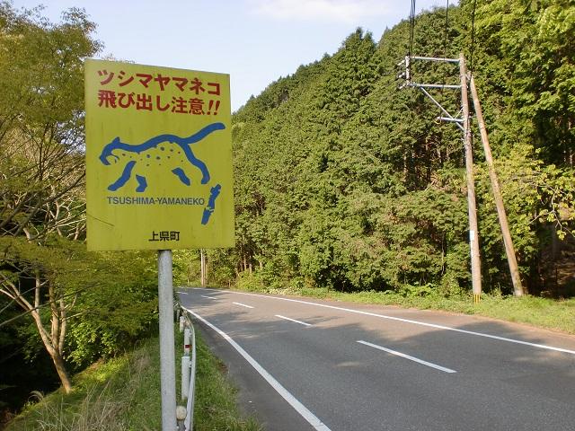 ツシマヤマネコ注意の道路標識の画像