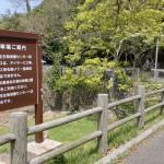 棹崎公園の駐車場の画像
