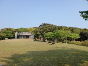 上見坂園地(対馬)の画像