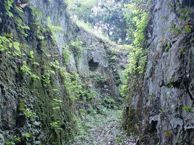大山砲台に残る通路跡の画像