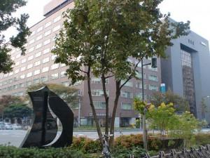 福岡市天神、旧ショッパーズ(ノース天神)前(スターバックス前)の柿の木の画像