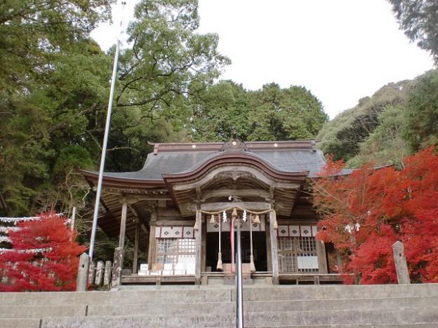 仁比山神社本殿の紅葉の画像