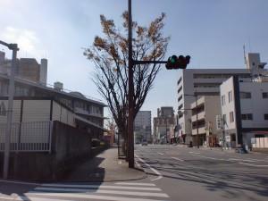 到津口門跡前の県道270号線の歩道の画像