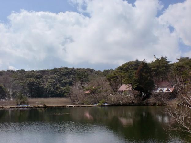 作礼山山頂傍にあるみどり池の画像