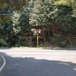 林道浅井谷線の終点(岸岳登山道入口近く)の画像
