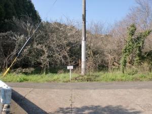 綾瀬集落から坂を上った先にあるT字路の画像