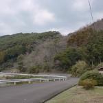 不動寺池前の車道(聖岳登山口)の画像