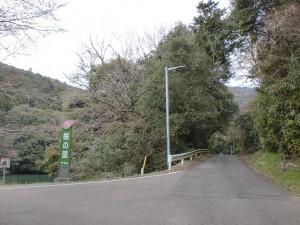 白岩山登山口に至る途中の桜の里入口のT字路の画像