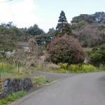 白岩山登山口手前の農道に入る分岐地点の画像