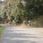 鳥越トンネル上の唐泉山登山口への林道分岐地点の画像