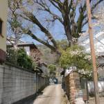 泉山口屋番所跡左横の路地の画像