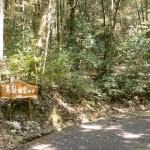 白川キャンプ場(黒髪山・本城岳登山口)の奥に設置された黒髪山登山口を示す道標の画像