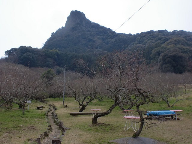 御船ヶ丘梅林から見上げる御船山の画像