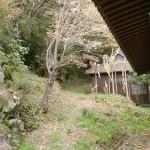 円応寺山門左側の柏岳登山道入口の画像