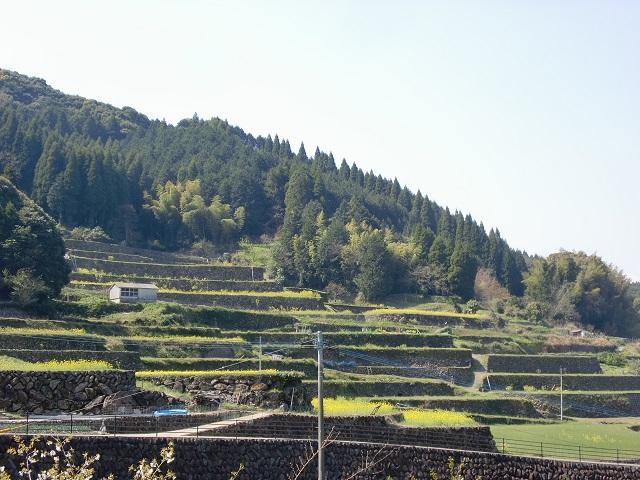 八幡岳の登山口 蕨野の棚田にバスでアクセスする方法