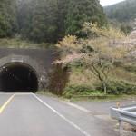 国見トンネル入口(潜木側)の画像
