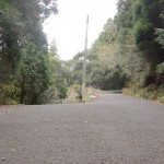 国見トンネル手前の国道498号線の旧道分岐(潜木バス停側から)の画像