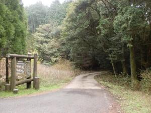 八天岳登山口(栗ノ木峠)から八天岳への林道(旧軍道・砲台道)を見るの画像