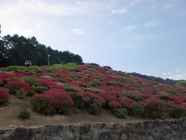 冷水岳・大観山・長串山の登山口にアクセスする方法
