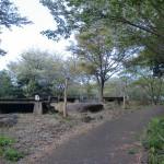 長串山公園のキャンプ場の画像