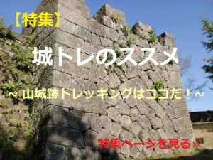 城トレのススメ
