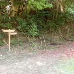 二丈岳登山口(木の香ランド・加茂神社側)の画像