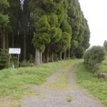 トラピスト修道院正面入口前の林道入口の画像