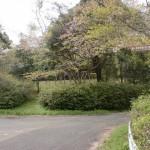 腰岳健康の森公園入口のT字路の画像