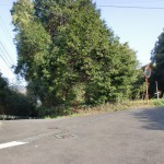 神田駅前から韮岳登山口に向かう途中のT字路を左折してすぐのT字路を右折した先にある分岐の画像