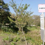 今福駅前バス停(松浦市乗合バス)の画像