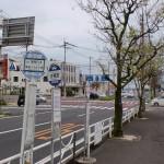 横断道路観光港入口バス停の画像