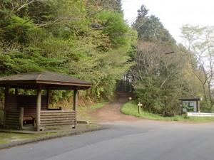 歯長峠(へんろ道)の画像