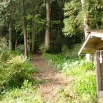 泉ヶ森登山道入口(土居仲西組バス停側)の画像