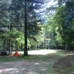 県民いこいの森キャンプ場の広場の画像