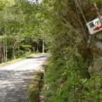 大道川バス停横にある林道の入口の画像