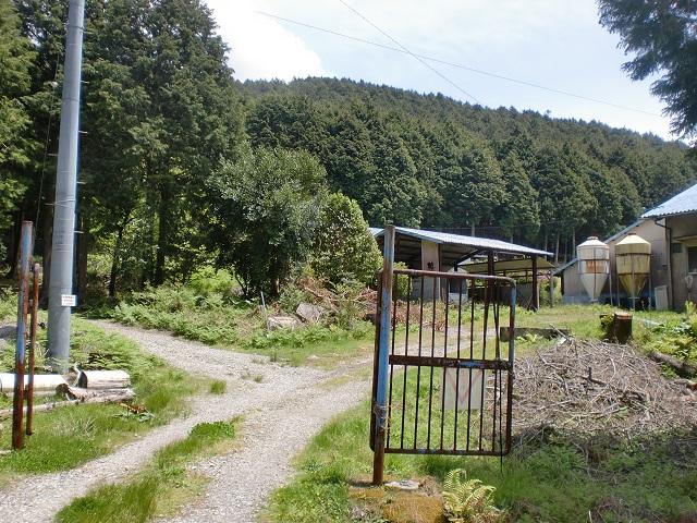 譲ヶ葉森登山道入口手前の畜舎跡ゲート前の画像